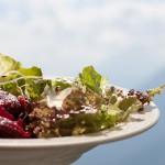 frischer-salat-haashof-videgg-554