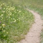 wanderweg-videgg-012